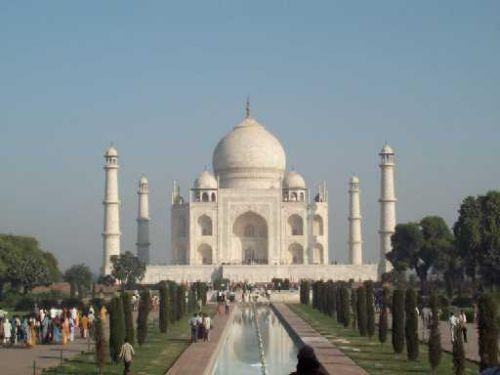 india-tarji